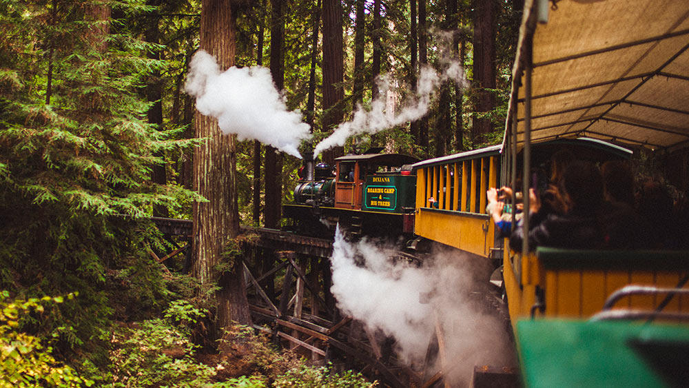 Roaring Camp Train