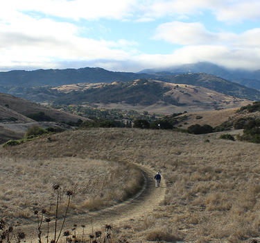 Hiking trails at Santa Teresa Park looking toward the Santa Cruz Mountains