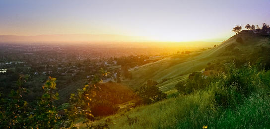 The rolling hills stretching to the city suburbs of San Jose at Alum Rock Park.