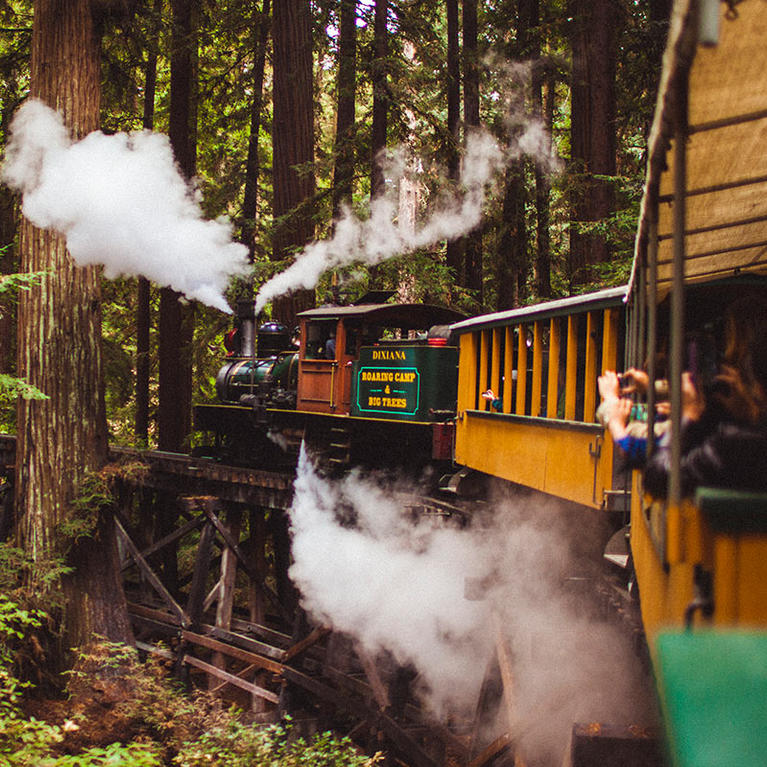 Families enjoy a ride through the redwoods on the Roaring Camp and Big Trees train